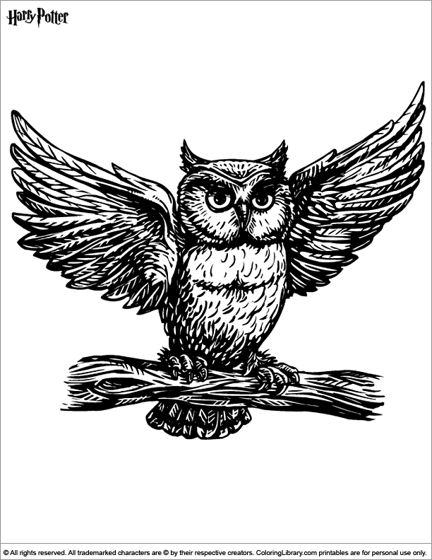 Harry Potter Coloring Picture