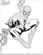 Spider Man coloring